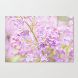 Lilac Flowers Mist Canvas Print