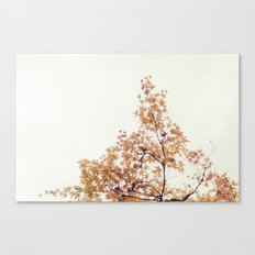 Autumn Stars Canvas Print