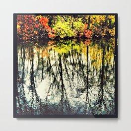 Fall Mirror Image Tree's Reflections Metal Print