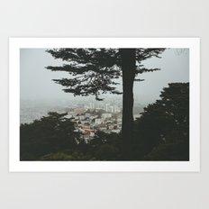 Buena Vista Park, San Francisco Art Print