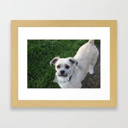 Fudge Framed Art Print