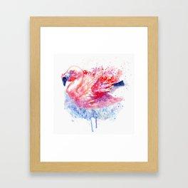 Flamingo on the Water Framed Art Print