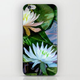 Lilly pond iPhone Skin
