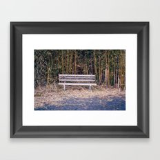 Bench in Brick, NJ Framed Art Print