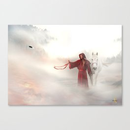 Rhesus Canvas Print