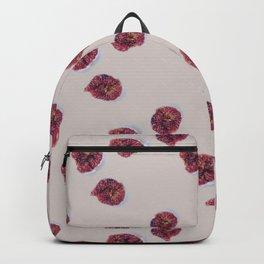Fig. 1 sm. Backpack