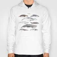 whales Hoodies featuring Whales by BySamantha | Samantha Ranlet
