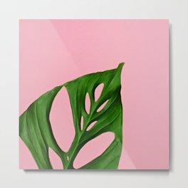 Plants on Pink v2 Metal Print