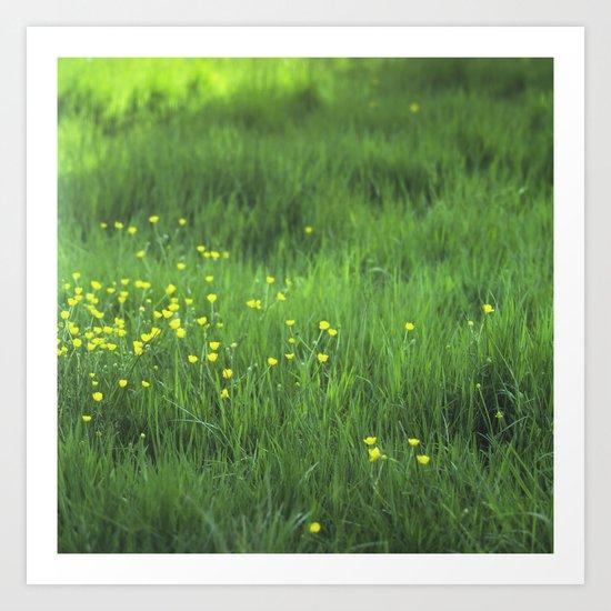 yellow flowers Art Print