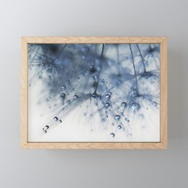 dandelion blue drop Framed Mini Art Print