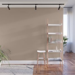 Pastel Pinkish Tan Solid Color Parable to Boulder Beige 3001-10A by Valspar Wall Mural