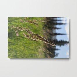 McCall Lake, Idaho Metal Print