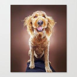 Super Pets Series 1 - Super Misiu Smiles Canvas Print