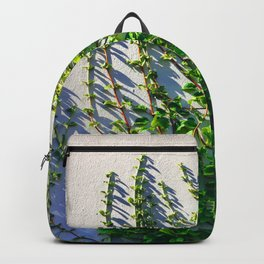 Climbing Vines on a Wall Backpack