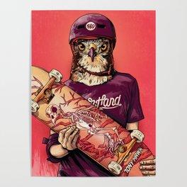 Tony Hawk Poster