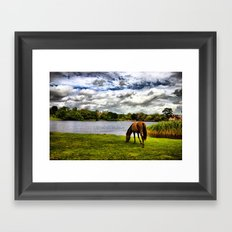 New Forest Pony (HDR) Framed Art Print