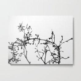 Strange Trees 6 Metal Print