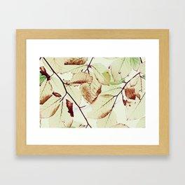 Leaves in October Framed Art Print