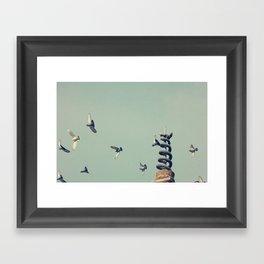 Flying Pigeons and Snakes Framed Art Print
