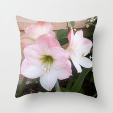 My Aunt's Flowers 1  Throw Pillow