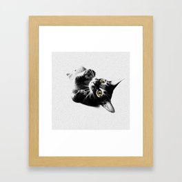 Cute Abyssinian cat  black and white Framed Art Print