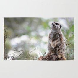 Meerkat on guard duty Rug