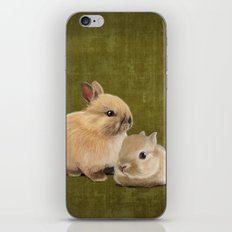 Portrait of two small bunnies iPhone & iPod Skin