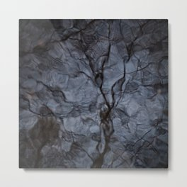 Reflected Tree 1 Metal Print