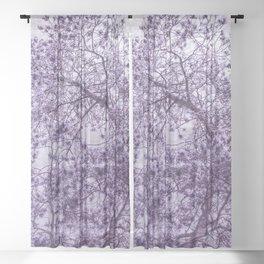 Beautiful Pine Tree Silhouette Purple Color #decor #society6 #buyart Sheer Curtain
