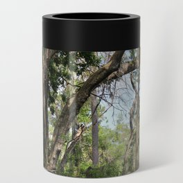 Hiking in Florida Can Cooler