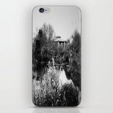 Tea Garden iPhone & iPod Skin