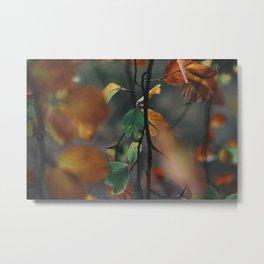 Falling Leaves III Metal Print