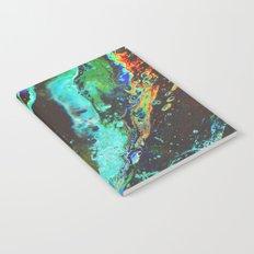Amplify Notebook