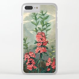 Pink Floral The Narrow-leaved Kalmia : Temple of Flora Clear iPhone Case