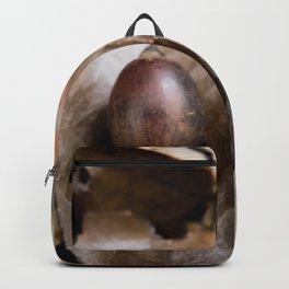 Donguri Deadfall Backpack