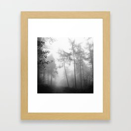 TROUGHT THE FOREST Framed Art Print