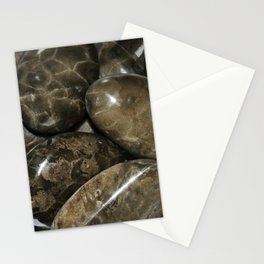 Fossilized Coral Stationery Cards