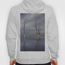 Dry trees submerged in the lake. Hoody