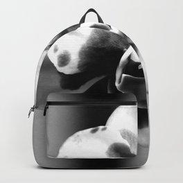 Gather 'Round - BW Backpack
