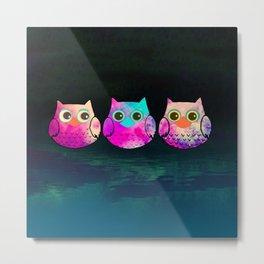 owl-29 Metal Print