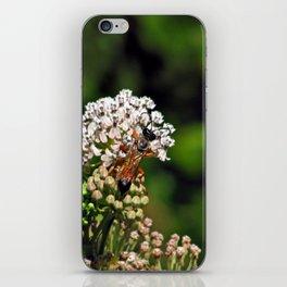Wasp 1797 iPhone Skin