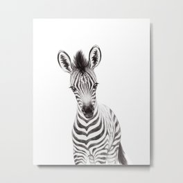 Zebra Baby, Black & White, Safari Baby Animals, Nursery Animals Cute Kids Room Decor Metal Print
