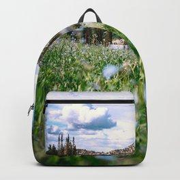 Landscapes Backpack