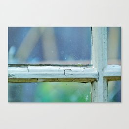 tinted view Canvas Print