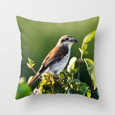 One Bird in the Bush (just one) Throw Pillow