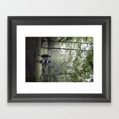 beach lake  Framed Art Print