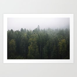 Into the Forest I go – Moody Landscape Photography Art Print