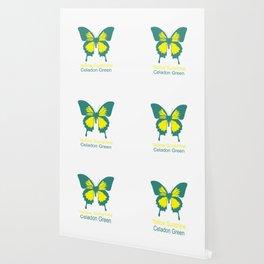 Ulysses Butterfly 1 Wallpaper
