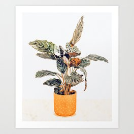 Botany || #illustration #painting #nature Art Print