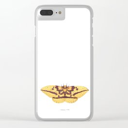 Imperial Moth (Eacles imperialis) Clear iPhone Case